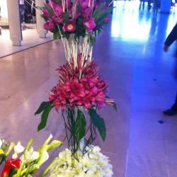 نيابة عن روز مرسويس-زهور الزفاف-مدينة تونس-2