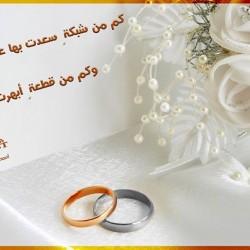 ترست-خواتم ومجوهرات الزفاف-الاسكندرية-5
