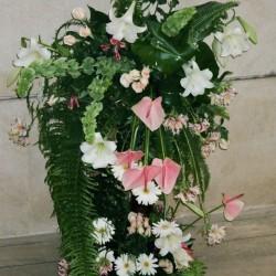 كلاهما أرجواني-زهور الزفاف-الدار البيضاء-3