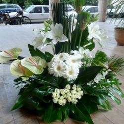 كلاهما أرجواني-زهور الزفاف-الدار البيضاء-6