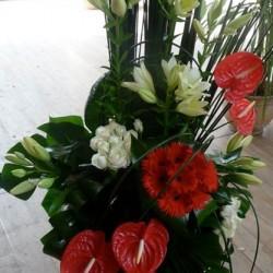 كلاهما أرجواني-زهور الزفاف-الدار البيضاء-5