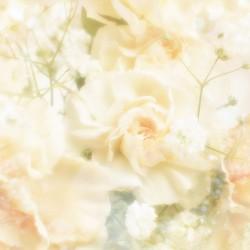زهرة جميل-زهور الزفاف-الدار البيضاء-1