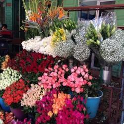 الورود عربية-زهور الزفاف-مراكش-2