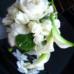 والزهور وأنا-زهور الزفاف-الرباط-3