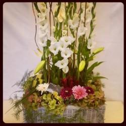 والزهور وأنا-زهور الزفاف-الرباط-4