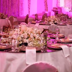 النادي الدبلوماسي-الحدائق والنوادي-الدوحة-3
