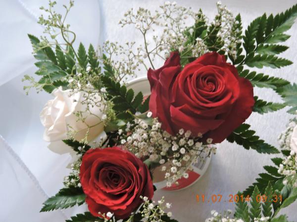 الزهور الطازجة يوميا - زهور الزفاف - الرباط