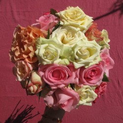 أحداث سوفلاور-زهور الزفاف-مدينة تونس-3