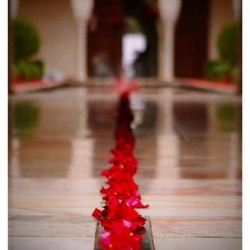 Perfect Shot-Photographes-Marrakech-5