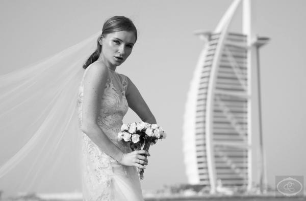 الأناقة الخالدة - التصوير الفوتوغرافي والفيديو - أبوظبي