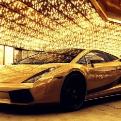 في ام اف-سيارة الزفة-دبي-3