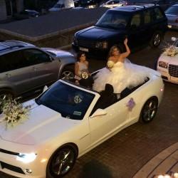شوكايس-سيارة الزفة-بيروت-2