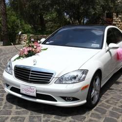 شوكايس-سيارة الزفة-بيروت-1