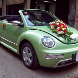 انديجو جلت-سيارة الزفة-دبي-1