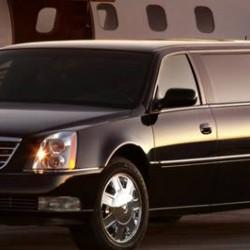فوكس ترانسبورت-سيارة الزفة-الدوحة-5