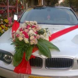 النعماني لخدمات الليموزين-سيارة الزفة-الاسكندرية-4