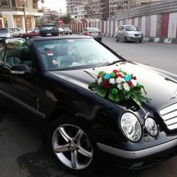 اوبشن ترافيل-سيارة الزفة-القاهرة-1
