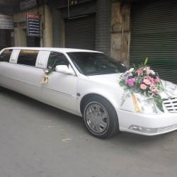 خلوصى تورز-سيارة الزفة-القاهرة-1