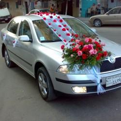 الاندلس-سيارة الزفة-الاسكندرية-5