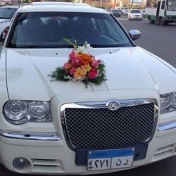 الزفه لإيجار السبارات-سيارة الزفة-القاهرة-6