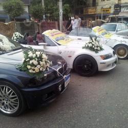 الزفه لإيجار السبارات-سيارة الزفة-القاهرة-4