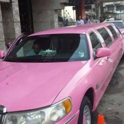 كار فور يور ويدينغ-سيارة الزفة-الاسكندرية-2