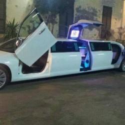 كار فور يور ويدينغ-سيارة الزفة-الاسكندرية-5