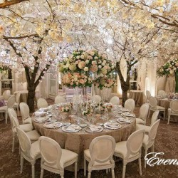 Events Paradise-Planification de mariage-Casablanca-1